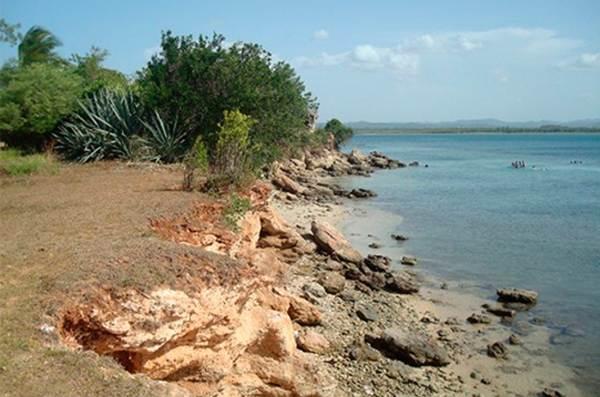 Desarrollan en Holguín proyectos medioambientales de protección a zonas costeras