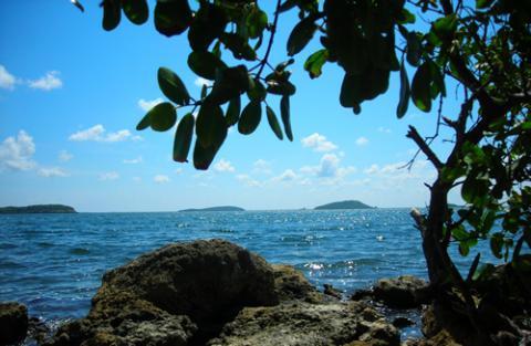 Priorizan erradicación de focos contaminantes en Camagüey