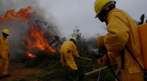 Alertan sobre extensión de los incendios forestales