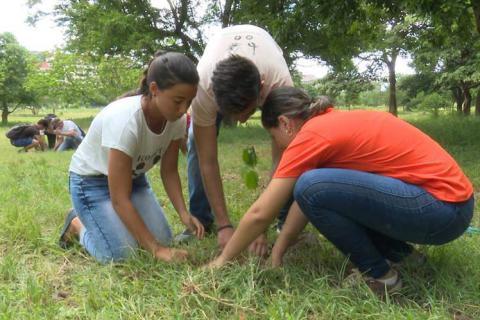 Jóvenes en Cuba siembran árboles por el futuro del planeta