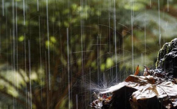 Evaluarán composición química de las lluvias sobre la Zona Especial de Desarrollo Mariel