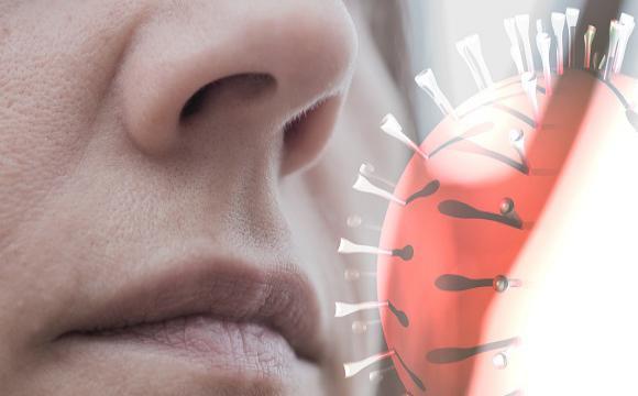 COVID-19 en el mundo: Pérdida del olfato puede anticipar buen pronóstico de la enfermedad