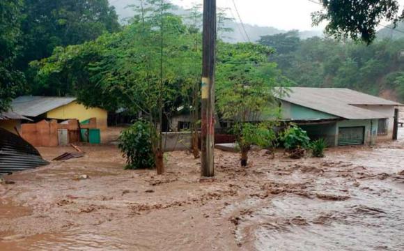 FAO reclama apoyo para afectados por huracanes en Centroamérica